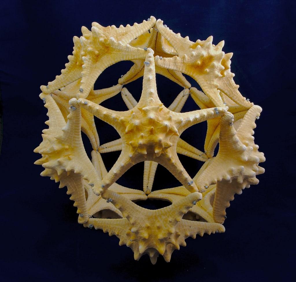 1994_Marine-animals_starfish-ball_03