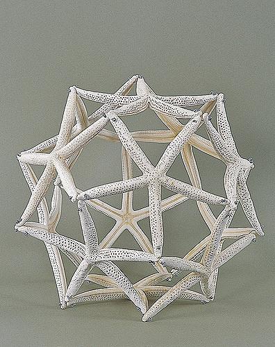 1994_Marine-animals_starfish-ball_04