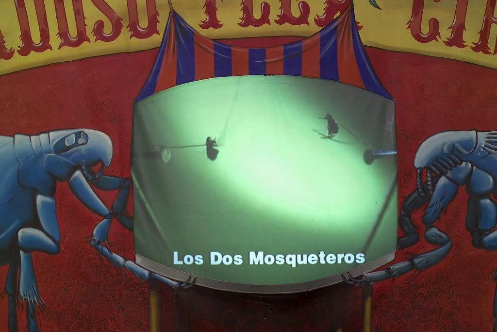 1998_cardoso flea circus_new museum NY_07