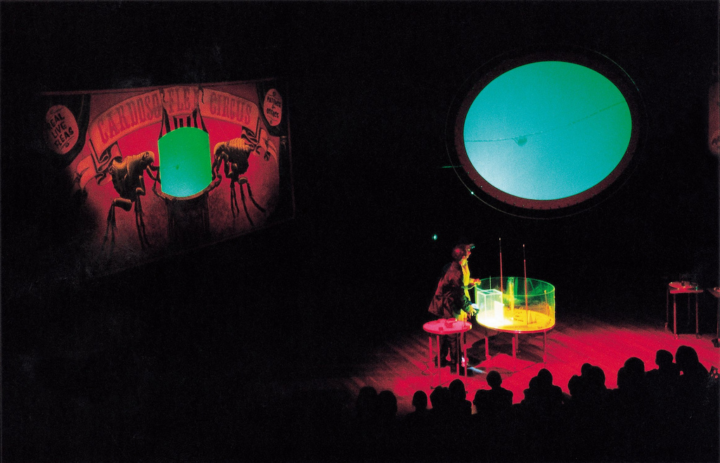 2000_cardoso flea circus_opera house_04