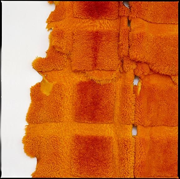 3-DETAIL-Orange