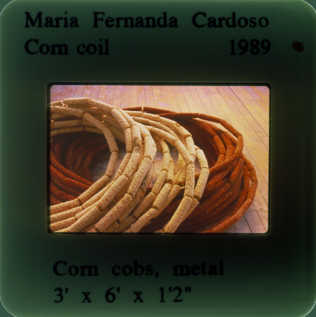 1989_corn-and-cobs_20