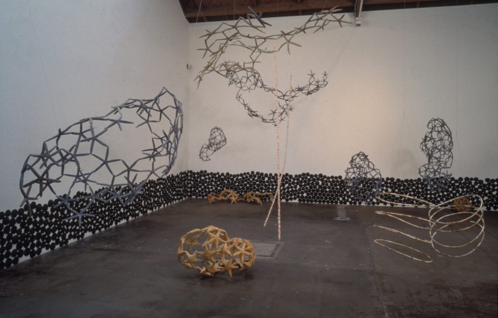 WOVEN WATER: SUBMARINE LANDSCAPE AT RUTH BLOOM GALLERY