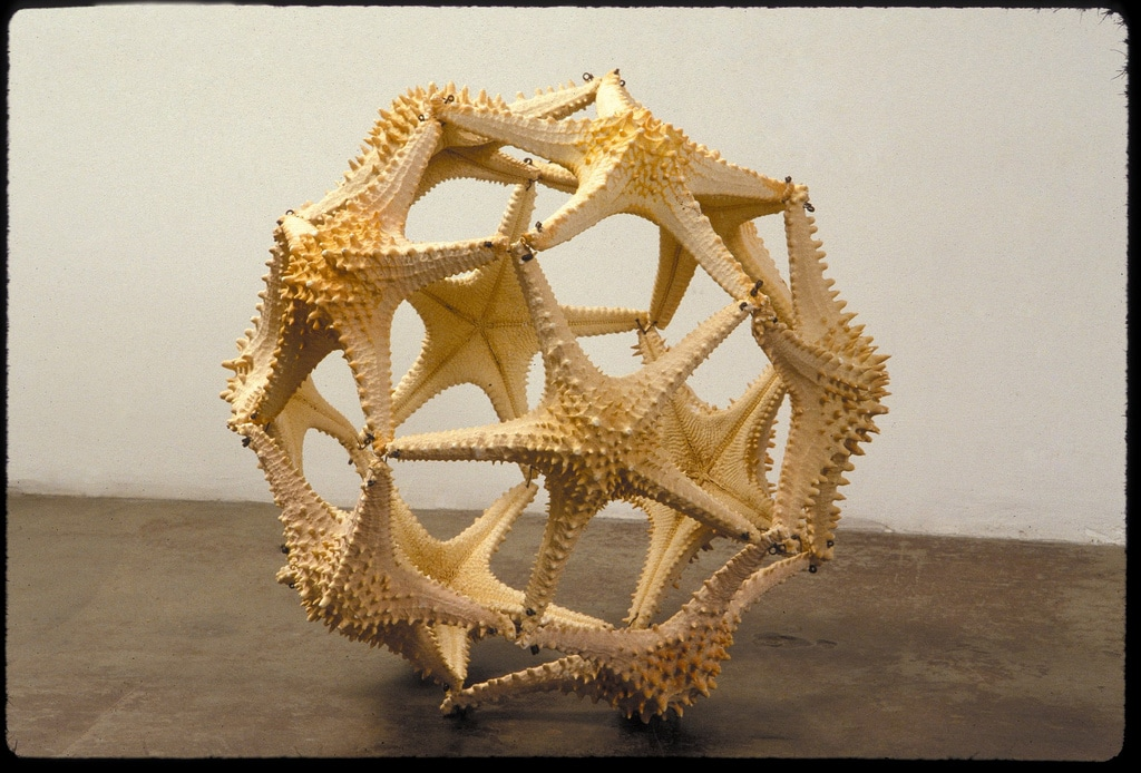 1994_Marine-animals_starfish-ball_02