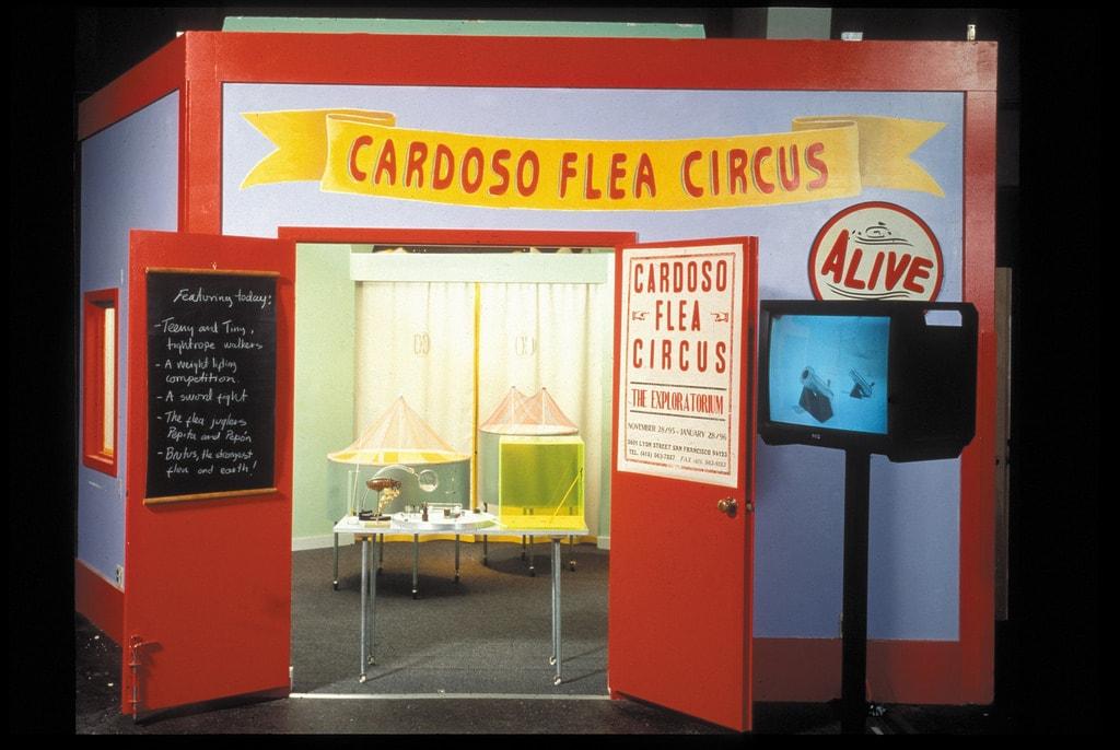1996_cardoso flea circus_exploratorium01