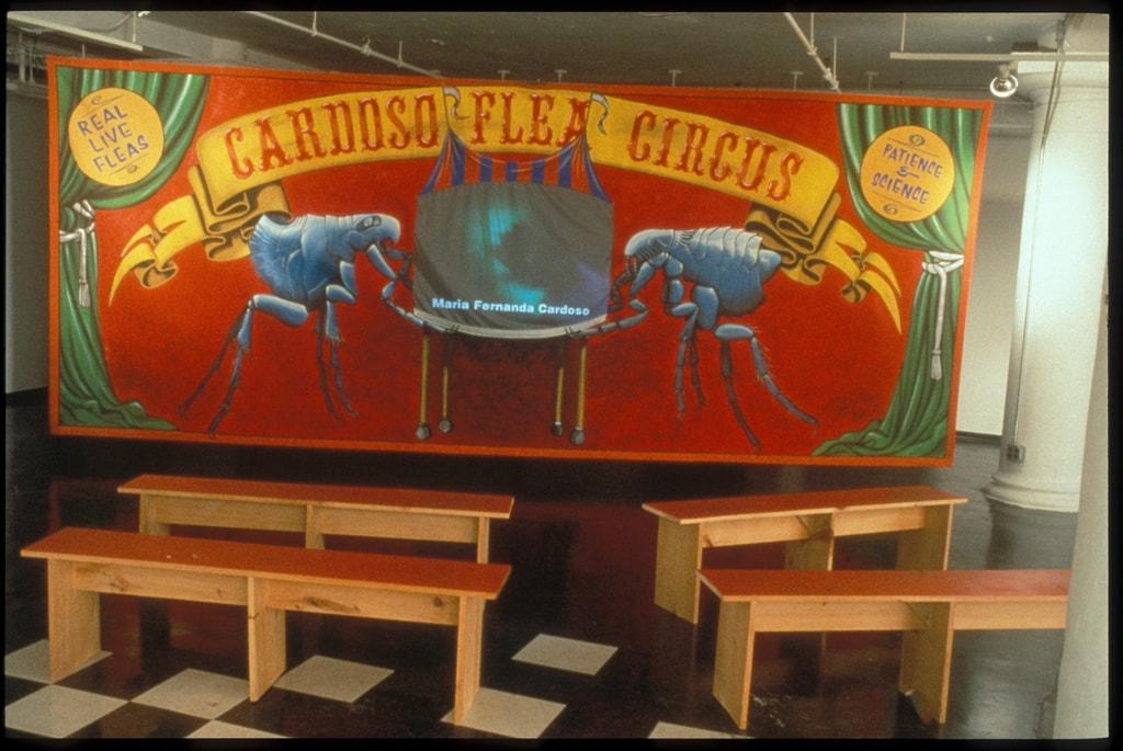 1998_cardoso flea circus_new museum NY_03