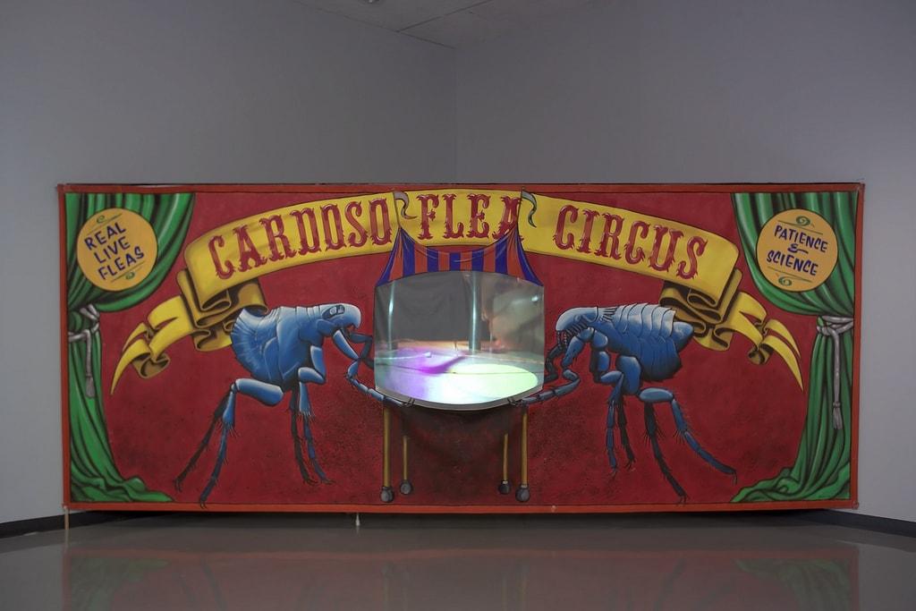 1998_cardoso flea circus_new museum NY_06