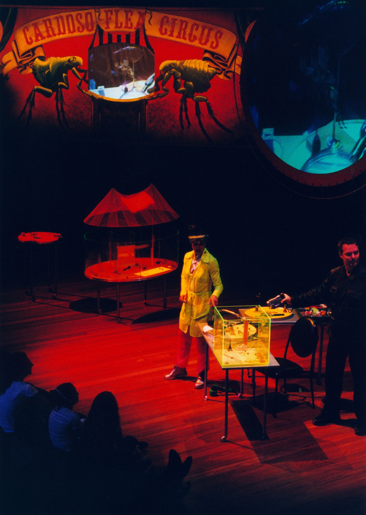 2000_cardoso flea circus_opera house_07