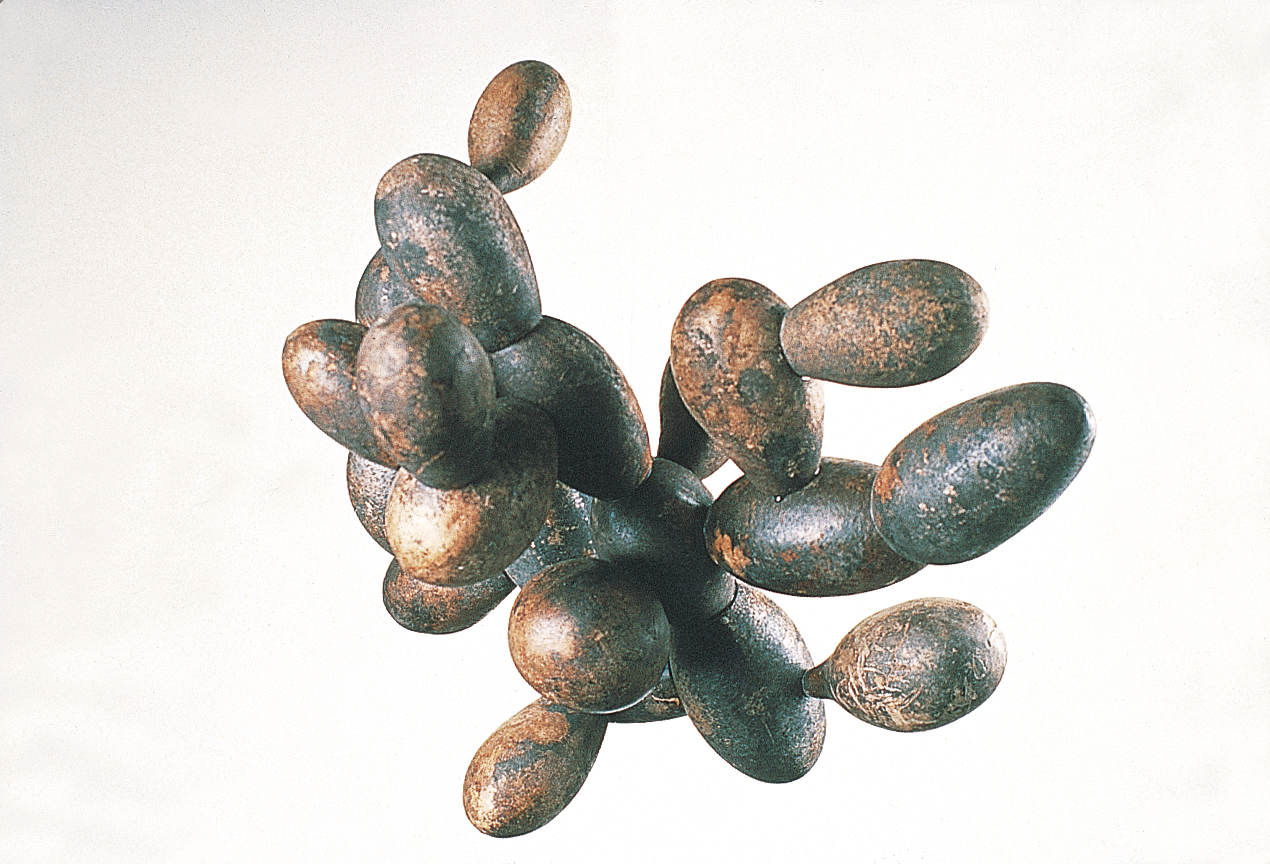 Calabazas / Gourds 1992. Gourds, polyurethane foam, wood, glue.