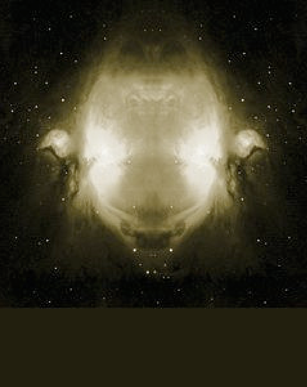 2004-starface-01-6