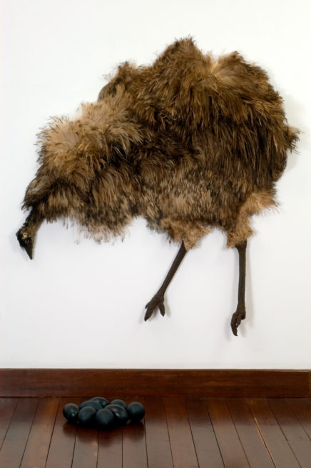 EMU / GALERIA CASAS RIEGNER BOGOTA