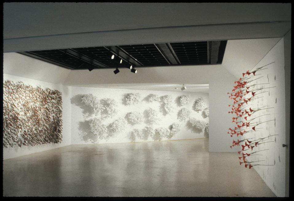 CEMETERY / VERTICAL GARDEN AT MUSEO DE ARTE CONTEMPORANEO DE CARACAS SOFIA IMBER