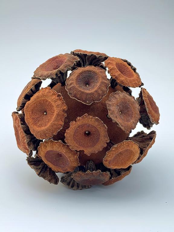 2021 Gumnut Sphere ECCICS.1