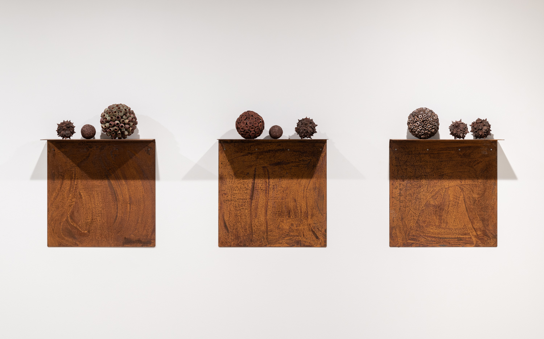 Gumnut spheres on artist made shelves 2, 3, 4