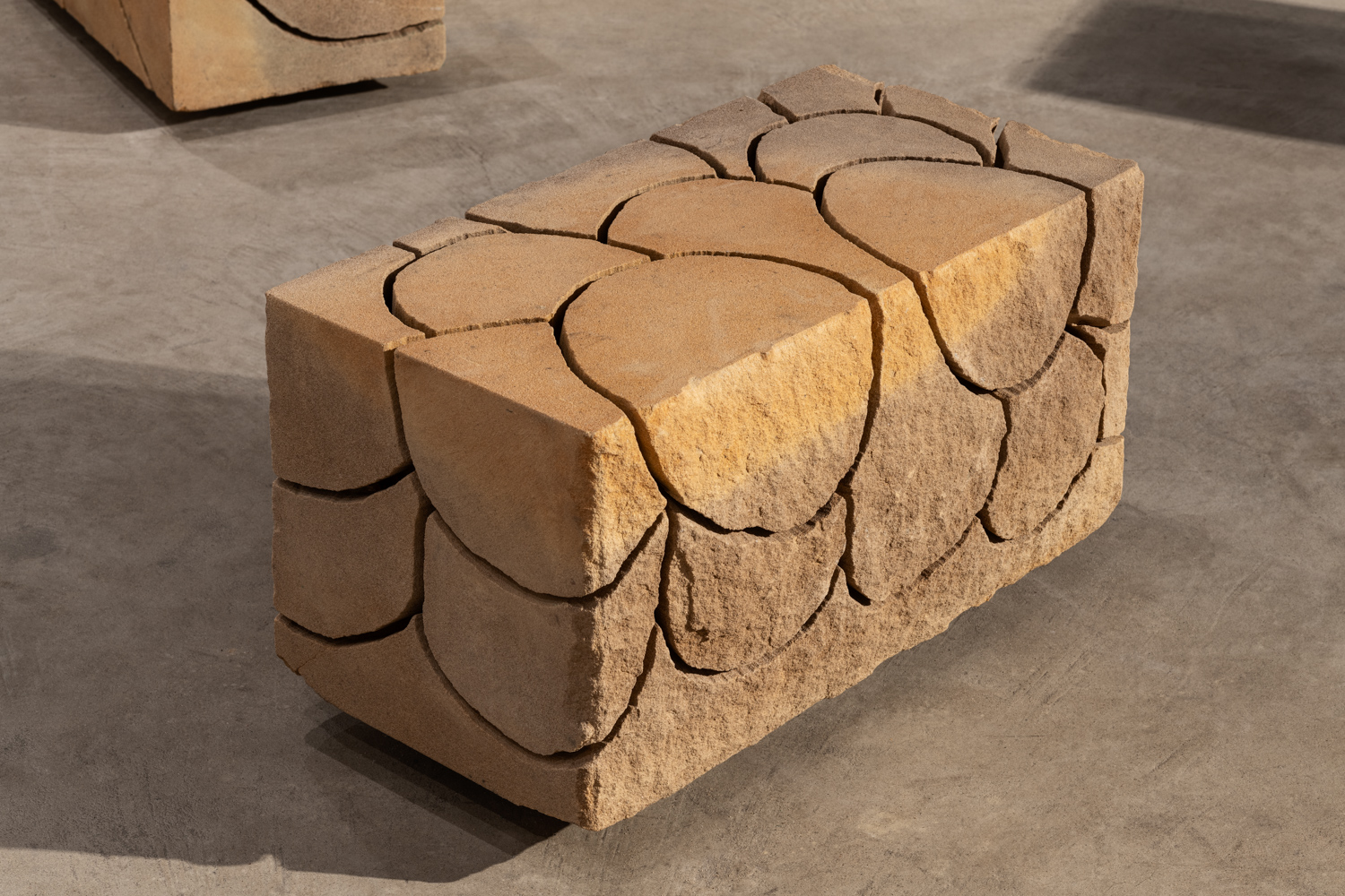 Maria Fernanda Cardoso, Scales from the Sandstone Drawing Series